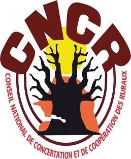 """Résultat de recherche d'images pour """"logo cncr sénégal"""""""